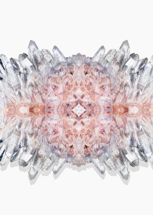Timothy Hogan Butterfly Crystal print