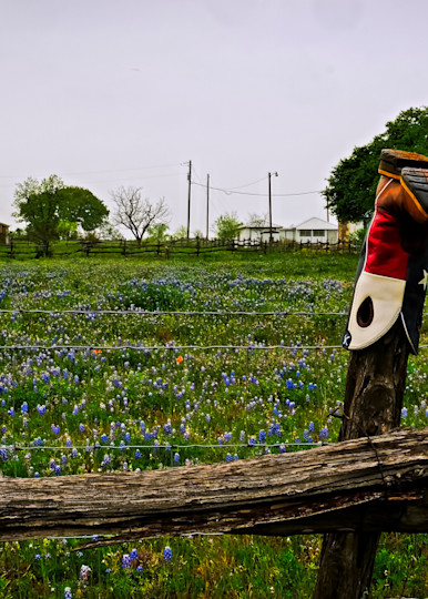 Bluebonnets And Boot 1 Colorful Photography Art | Drone Video TX