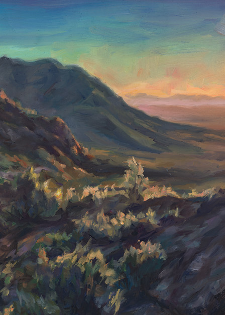 Sonoran Glow: watching the sunset from Peddlers Pass by Ans Taylor