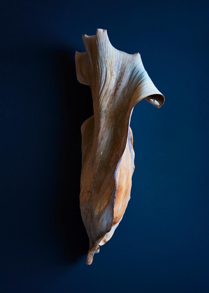 nude swim - William Couture