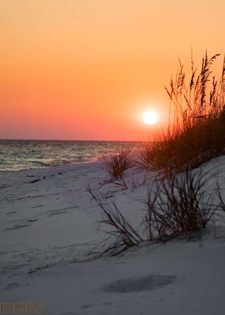 Ocean Sunset on Beach Photograph 1190 FL  | Florida Photography | Koral Martin Fine Art Photography