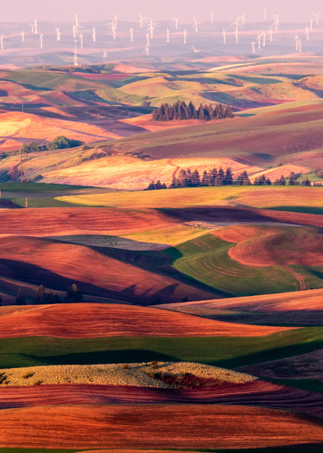 Palouse and wind farm