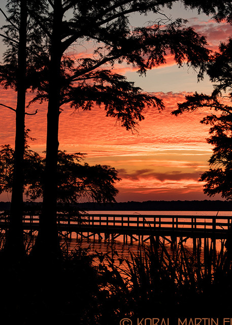 Sunrise Dock Reelfoot Lake Photograph 1371 LF  | Tennessee Photography | Koral Martin Fine Art Photography