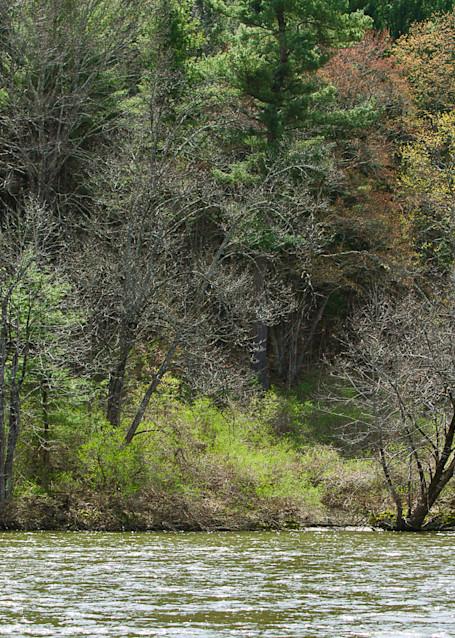 Jeff Adams Photography - Art Prints - Housatonic River Drift