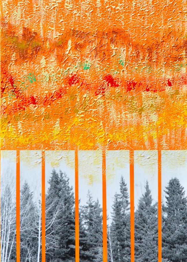 Morning Warbler Art | Perry Rath Arts