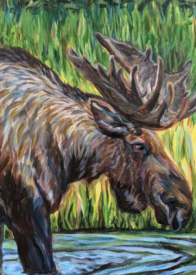 Bull Moose At Lakefront   Alaska Art Print Art | Amanda Faith Alaska Paintings / Estuary Arts, LLC