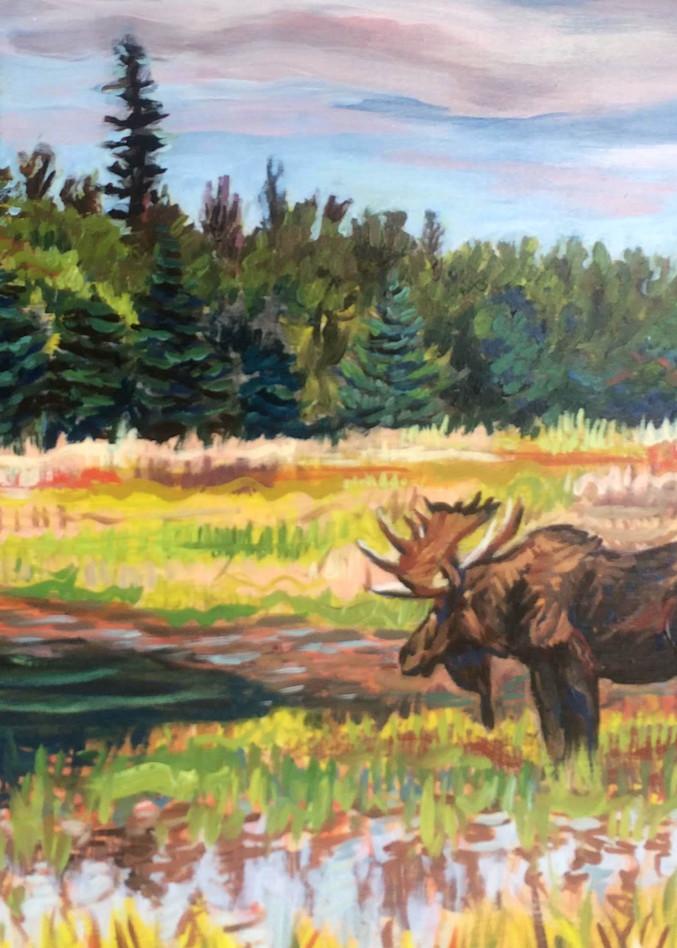 Bull Moose in Alaska Pond art print by Amanda Faith