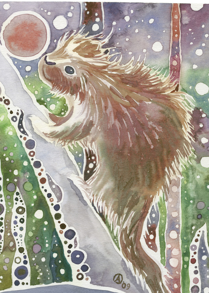 Baby Porcupine   Alaska Art Print Art | Amanda Faith Alaska Paintings / Estuary Arts, LLC