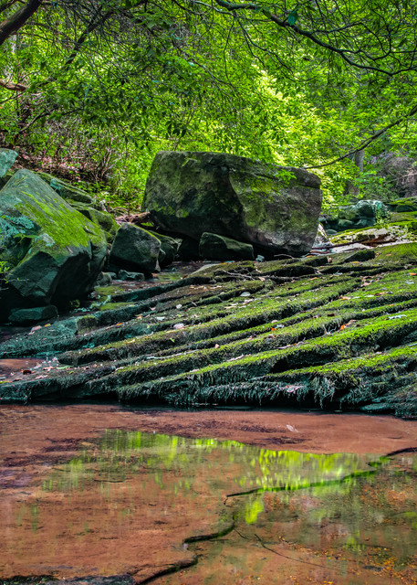 Peaceful pool Cloudland Canyon State Park photography print