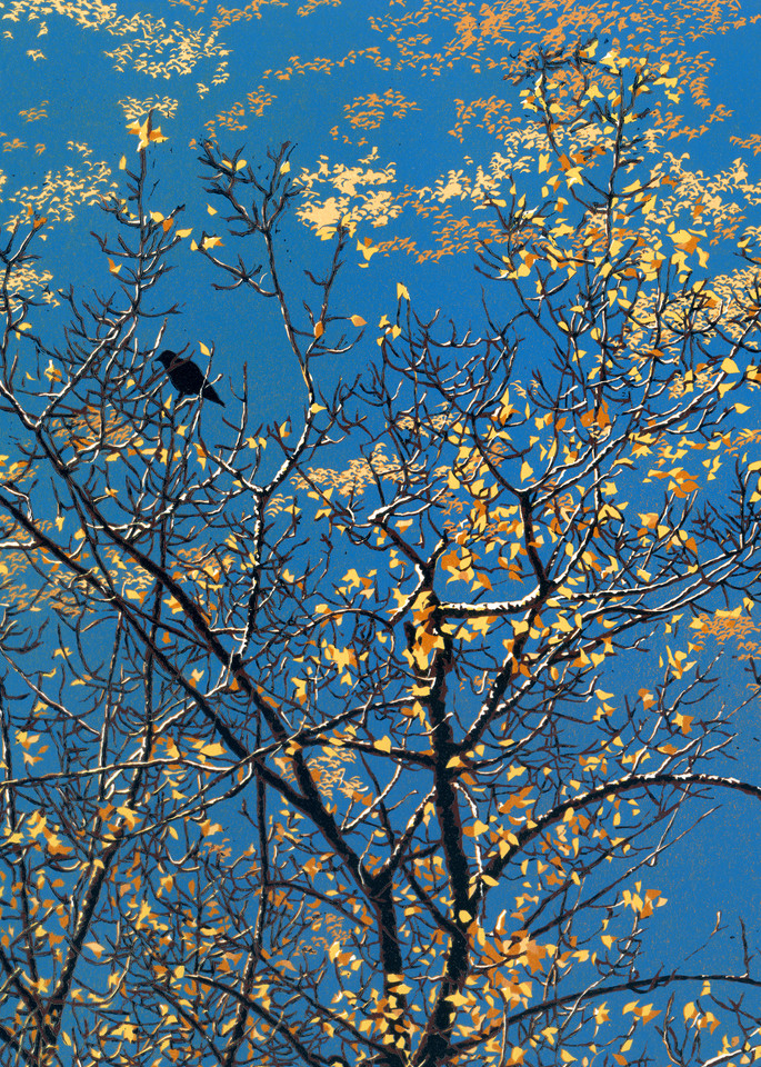 A crow roosts by the river in morning.