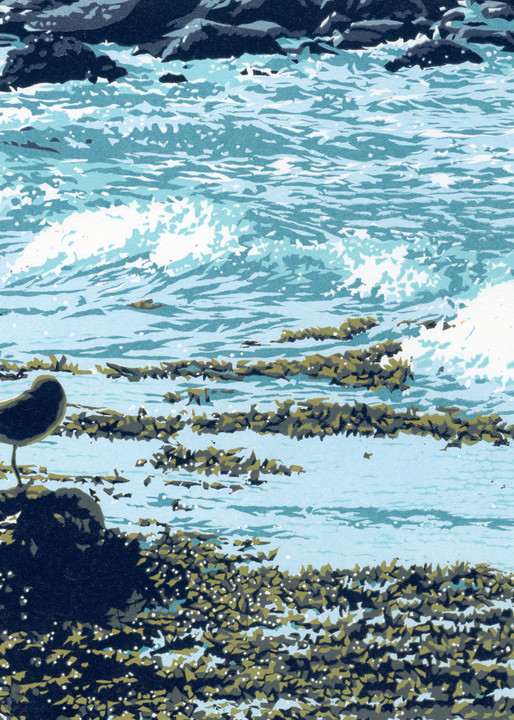 A lone plover rests on a rock by the ocean.