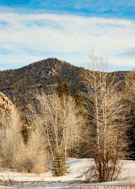 Cache La Poudre Canyon Scenic Drive 9513 Photograph | Colorado Photography | Koral Martin Fine Art Photography
