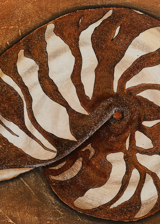 Sea Shell Art | Lindberghaus, Art by Dagi G.