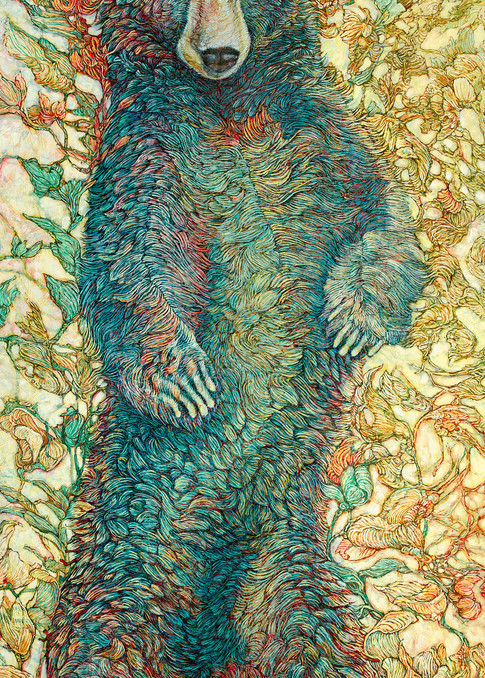 Monarch, Black Bear | Col Mitchell Contemporary Paper Artist