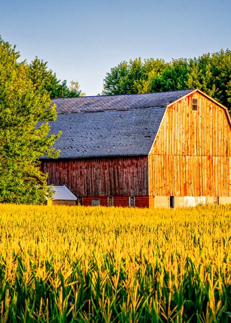 Minnesota Amish farm photography prints