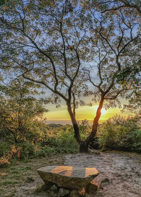 Menemsha Hills Solitude Art | Michael Blanchard Inspirational Photography - Crossroads Gallery