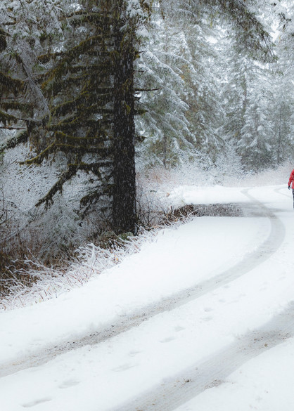 Woman walking down Power Creek Road during spring snow storm in Cordova in Southcentral Alaska. Morning.