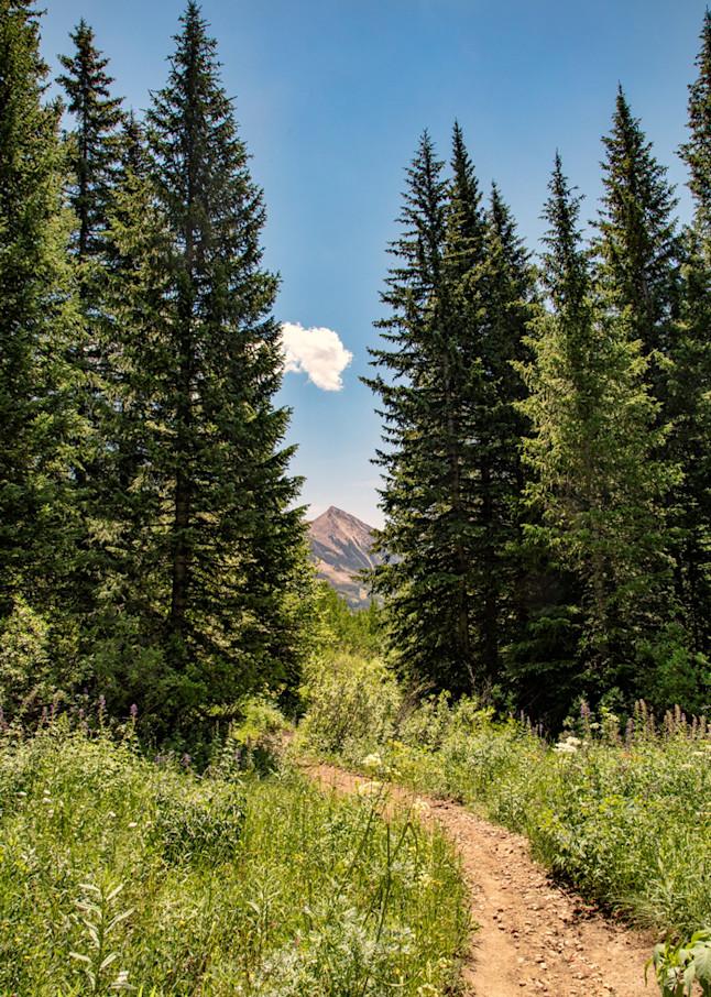 Snodgrass Trail  Photograph 7027 | Colorado Photography | Koral Martin Fine Art Photography