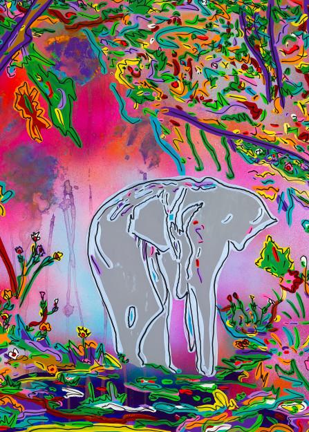 Wisdom   Animal Art   JD Shultz Art
