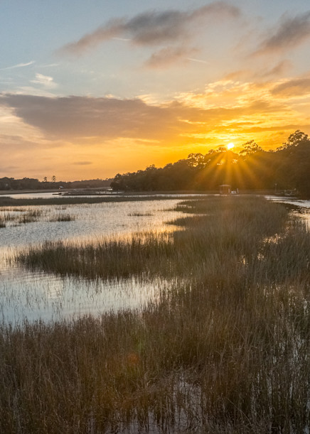 Charleston Marsh, Charleston, Sc Art | Drew Campbell Photography