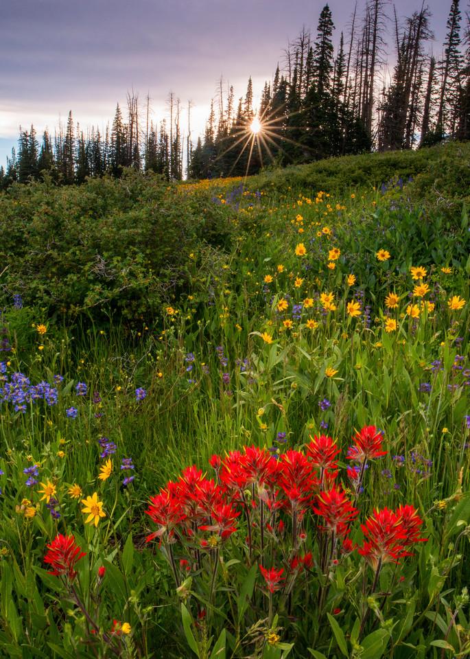 Indian Sunset Photography Art | Craig Primas Photography