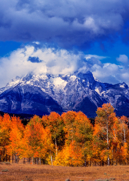 Mount Moran Autumn Winter Photography Art | Craig Primas Photography