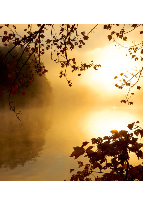Photo of Autumn view at Walden Pond with the sun shining through mist.