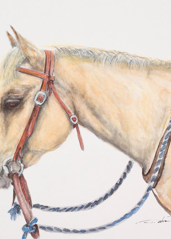 The Little Yellow Horse  Art   Debra Bruner Studio