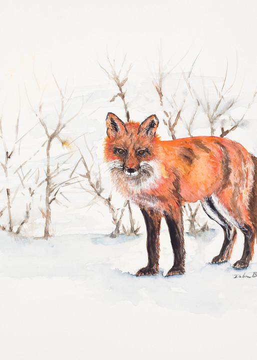 The Winter Fox  Art | Debra Bruner Studio