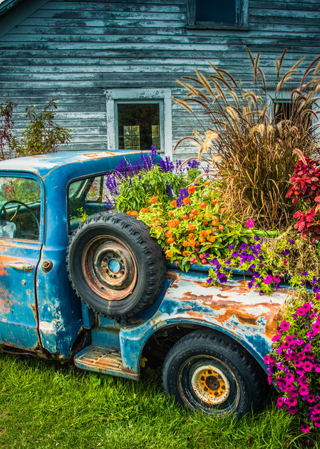 Flower Bed by Mike Caplan