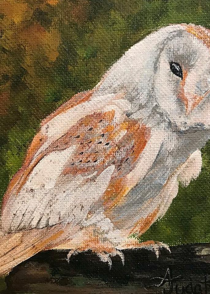Owl 1/3 Art | alanajudahart