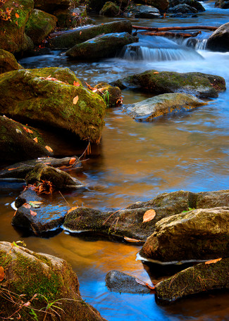 Autumn Stream Photography Art | templeimagery