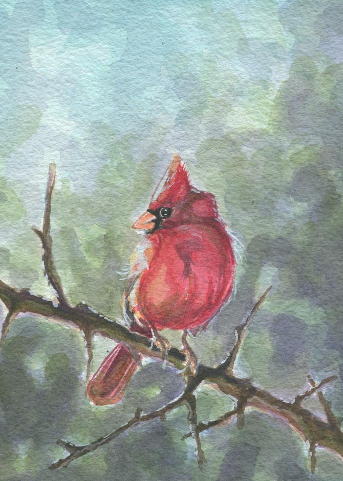Watercolor Cardinal
