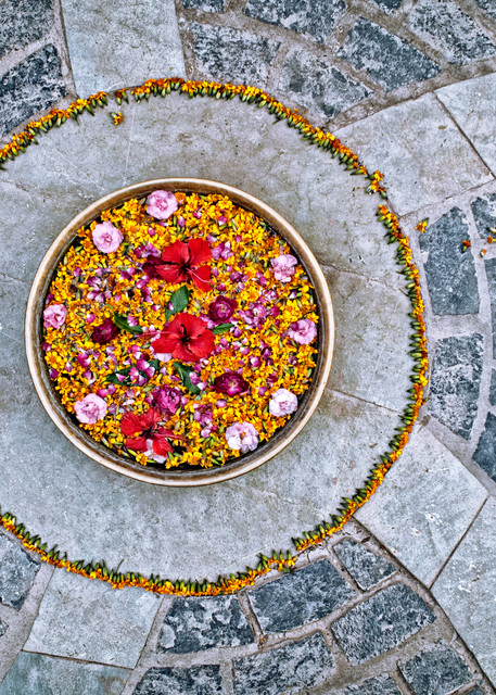 Bowl Of Flowers Photography Art | templeimagery