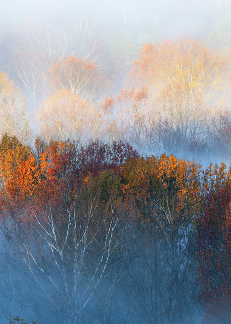 Tn  Autumn Morning Photography Art   templeimagery