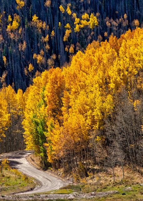 Aspen drive - Colorado photography prints