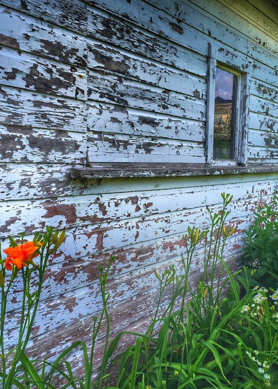 Peeling Away Photography Art | Mark Stall IMAGES