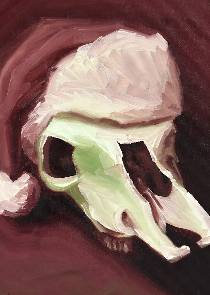 0042 Santa Cow Skull Art | Amy O'Hearn Art