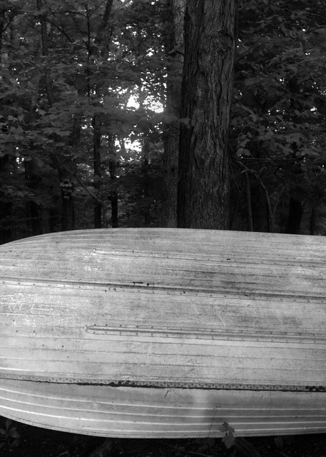 Rowboat In Forest Photography Art | Peter Welch