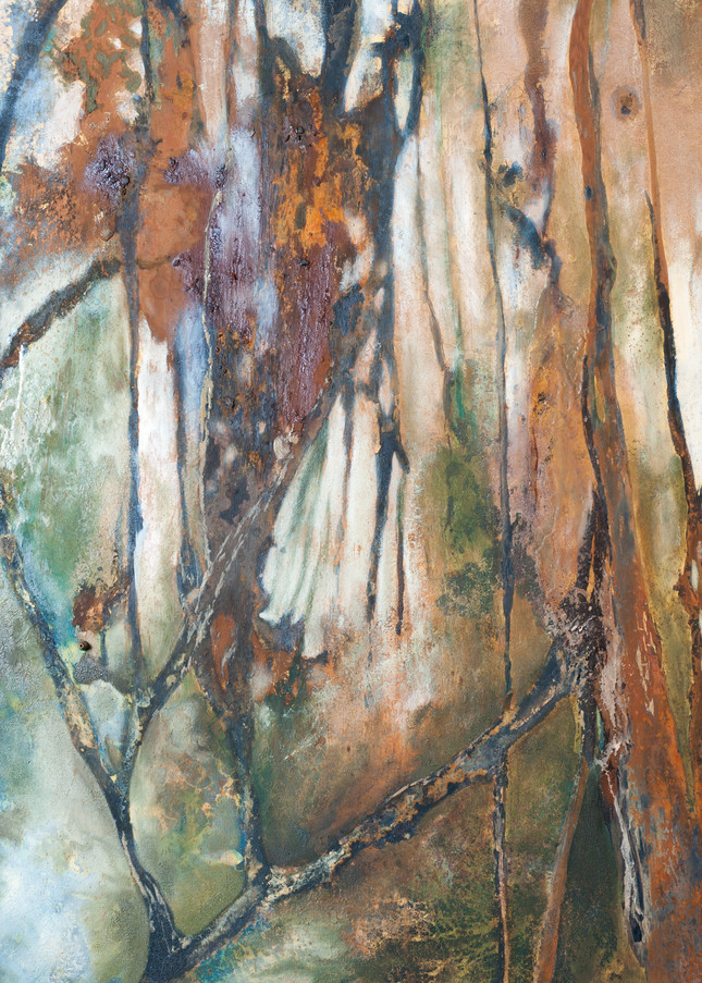 Silviculture, nature, trees, colorful, abstract.