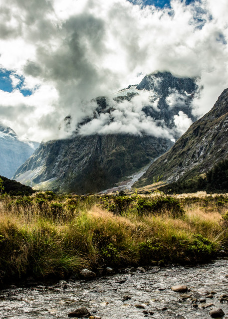 Fiordland Valley Stream Photography Art | Kristofer Reynolds Photography