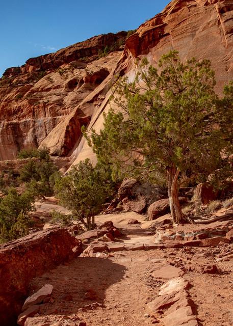 Canyon De Chelly View 3568 U 19   Art | Koral Martin Fine Art Photography