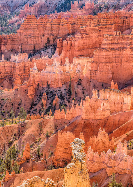 Bryce Canyon Hoodos Art | Michael Blanchard Inspirational Photography - Crossroads Gallery