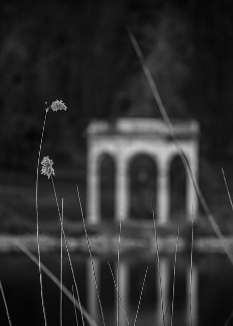 Asf 20180324 0731 M Photography Art | AnamariaSetti.art Photography