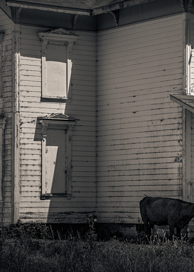 Abandoned House Pt Reyes Photography Art | Dan Katz, Inc.