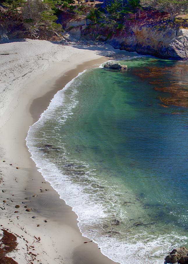 Point Lobos 4 Photography Art | Rosanne Nitti Fine Arts