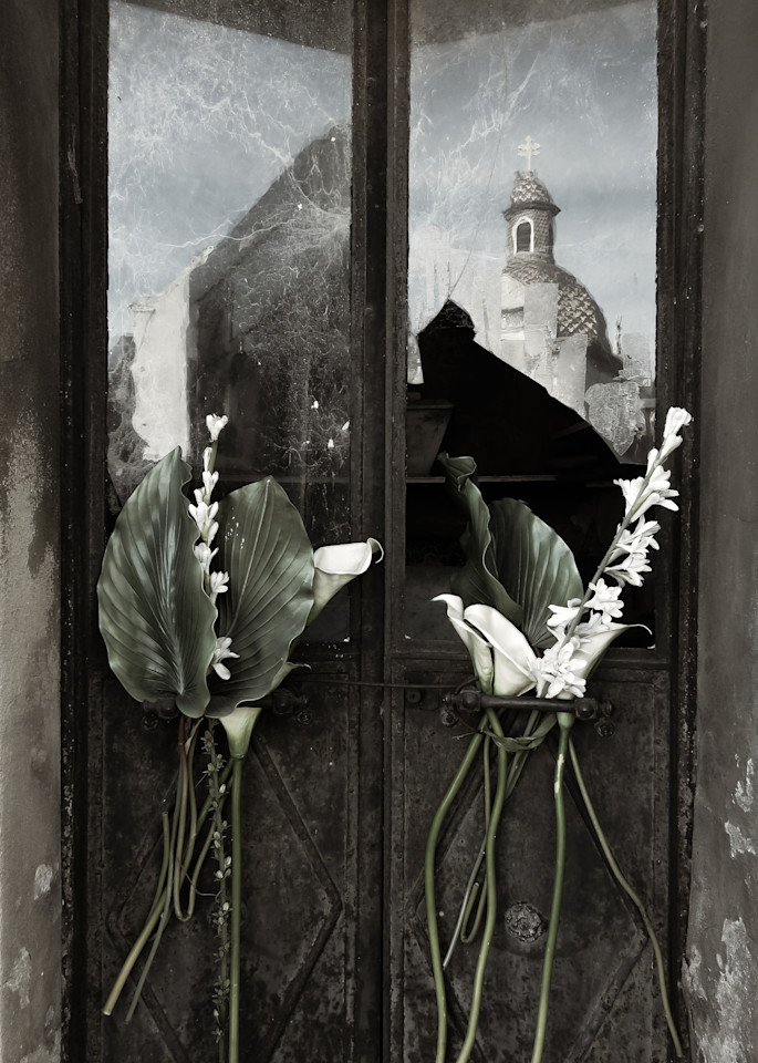 Palms Lilies And Broken Panes Photography Art | Dan Katz, Inc.