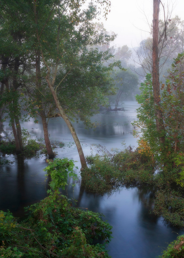 Constance Mier travel photography - capturing beautiful images of rivers and streams in the southern region of the United States