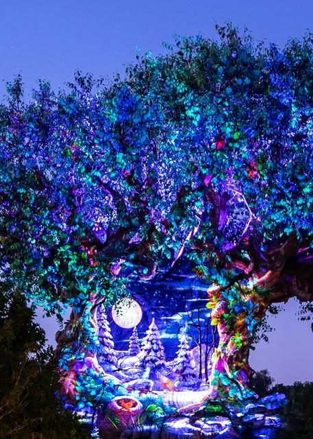 Tree of Life Holiday Awakenings Scene 6 - Walt Disney World Art | William Drew