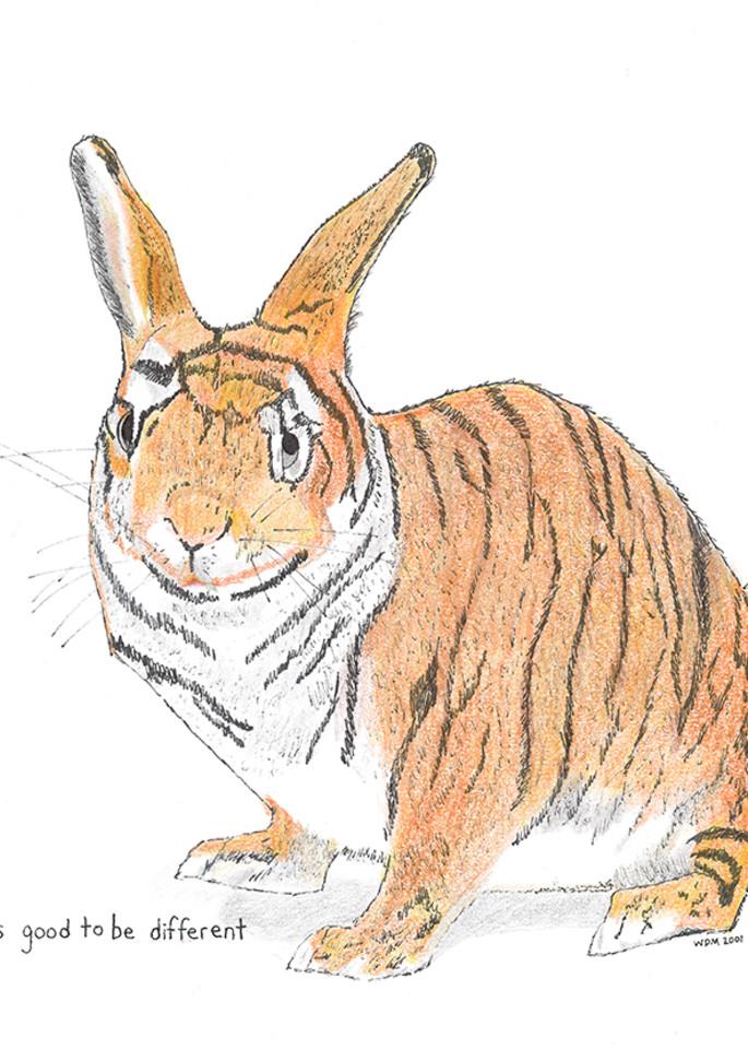 Tiger Bunny Art | Digital Arts Studio / Fine Art Marketplace